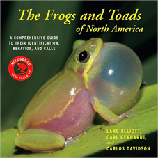 frogs_and_toads_23