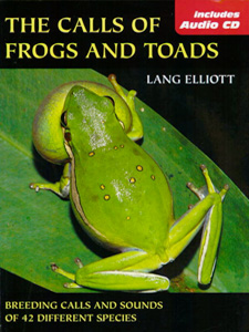 frogs_toads