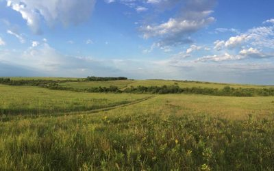 August Prairiesong – Podcast Prototype