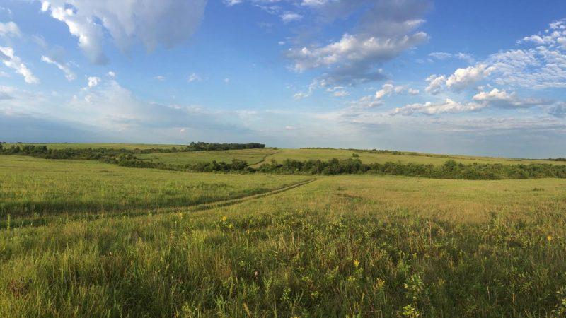 Taberville Prairie - 1400px by Lang Elliott
