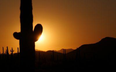 Desert Sojourn – Podcast