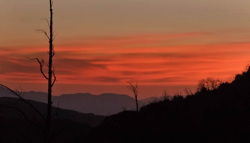 Midnight Breeze - track art for album: Atmospheric Surround