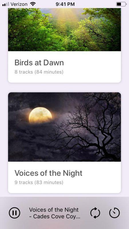 app screenshot #3