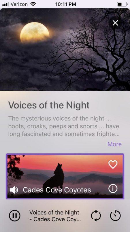 app screenshot #4