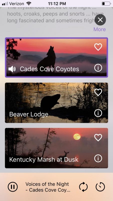 app screenshot #6